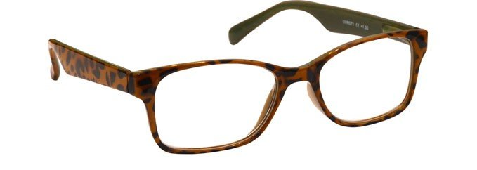 Brown Mint Green Reading Glasses Mens Womens R71-2
